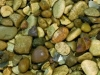 golden-gravel-10mm-or-20mm